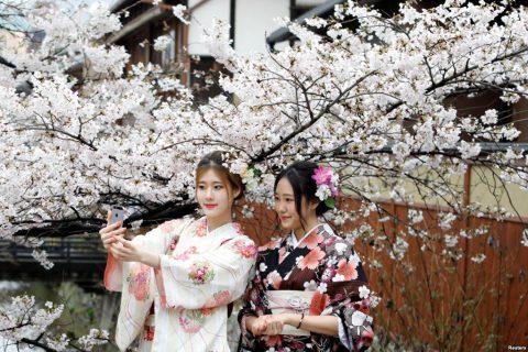 Khám phá những cách mặc kimono khác nhau giữa nam và nữ